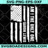 Aaron Lewis Am I The Only One Svg -US Stars - US Flag - Special Day - Memorial Day -Digital Download