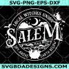Local Witches Union Salem SVG - Local Witches Union Salem - Halloween SVG- Witches SVG- Cricut - Digital Download