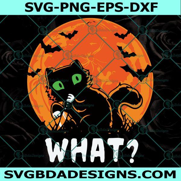 Black Cat halloween Svg, Black cat Halloween, Moon Svg, Cricut, Digital Download