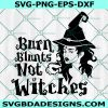 Burn Blunts Not Witches SVG, Witch SVG, Weed Witch Svg, Cricut, Digital Download