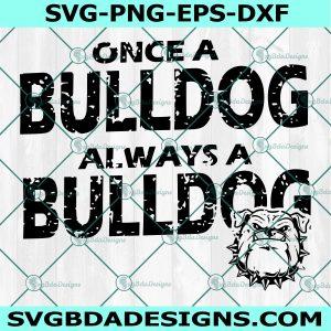 Once a Bulldog always a bulldog SVG, Bulldogs svg, Dogs svg,School Spirit Pride Svg, HighSchool Mascot Svg, Cricut, Digital Download
