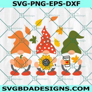 Thanksgiving Gnomes svg, Autumn Gnomes svg, Halloween svg, Hello Fall svg, Cricut, Digital Download